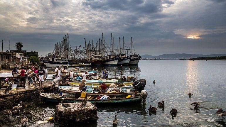 Photographer Matt Mawson Documents Life at the Mexico Fish Market